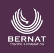 le logo de bernat conseil et formation représentant un phœnix blanc sur fond violet